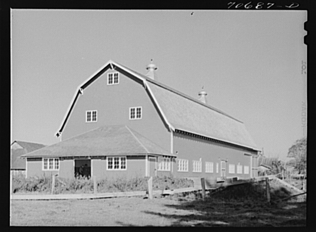 """""""Hip"""" barn of dairy farmer in Tillamook County, Oregon. Most of the milk produced in this county is made into cheese"""
