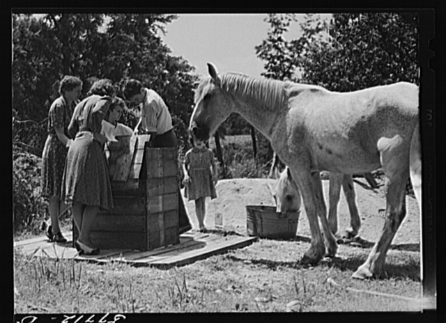 Home supervisor while making home visit to FSA (Farm Security Administration) borrower inspects water supply for repair. Charles County near La Plata, Maryland