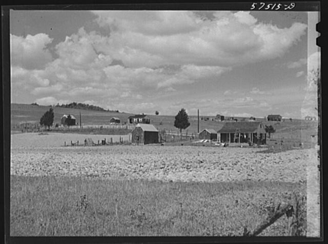 Homes on FSA (Farm Security Administration) project. Ida Valley Farms, Shenandoah Homesteads, near Luray, Virginia