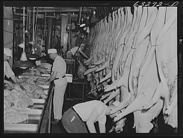 Inspections on innards in the pork department. Packing plant, Austin, Minnesota