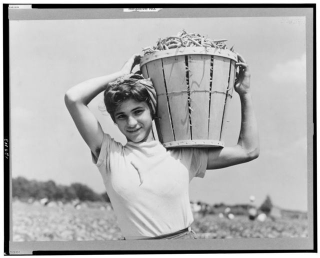Italian day laborer with basket of beans she has just picked. Seabrook Farms, Bridgeton, New Jersey