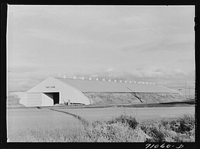 Klamath County, Oregon. Potato cellar