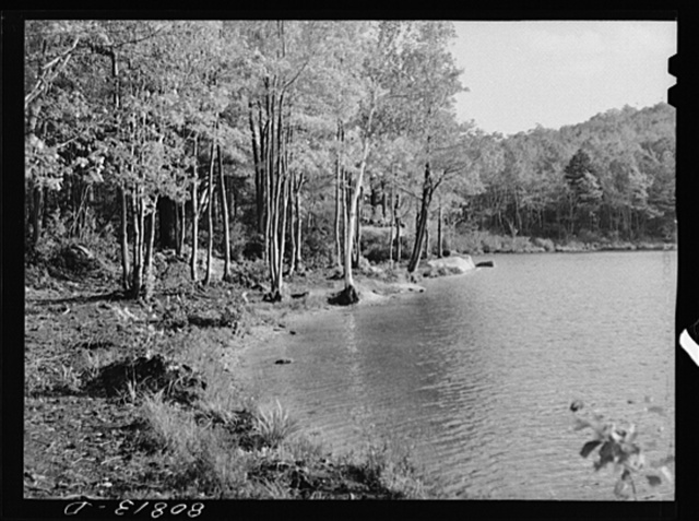 Lake opened to picnickers by the CCC (Civilian Conservation Corps) in the Savoy Mountain State Park, Massachusetts
