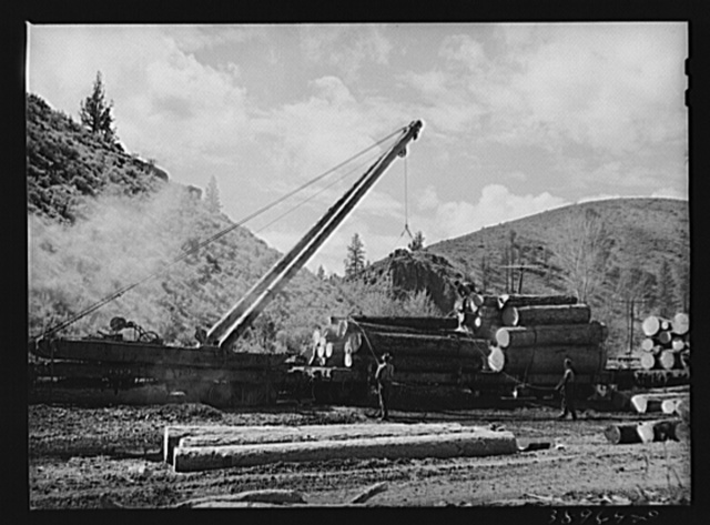 Lifting logs onto flatcars with derricks. Baker County, Oregon. State-supported schools in Oregon receive a good portion of their income from the forests