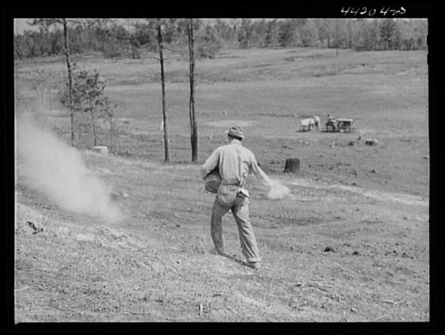 Liming a FSA (Farm Security Administration) pasture. Greene County, Georgia
