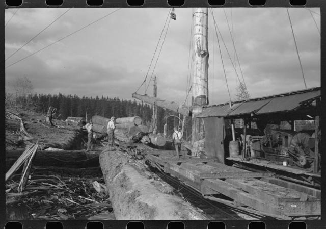 Loading logs on the flatcars, Long Bell Lumber Company, Cowlitz County, Washington