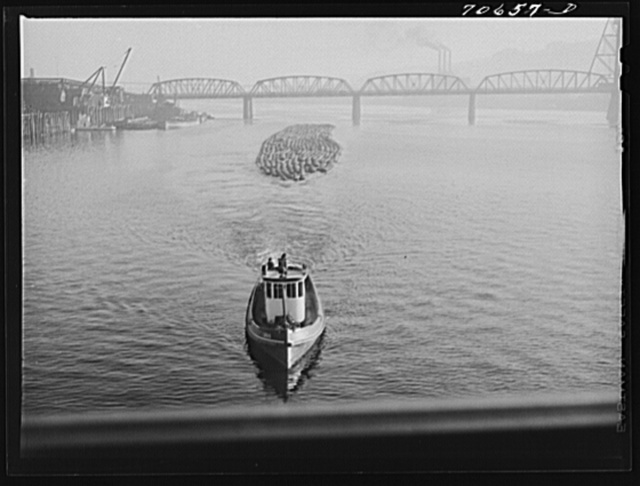 Log rafts are towed by tugs in the Willamette River. Portland, Oregon