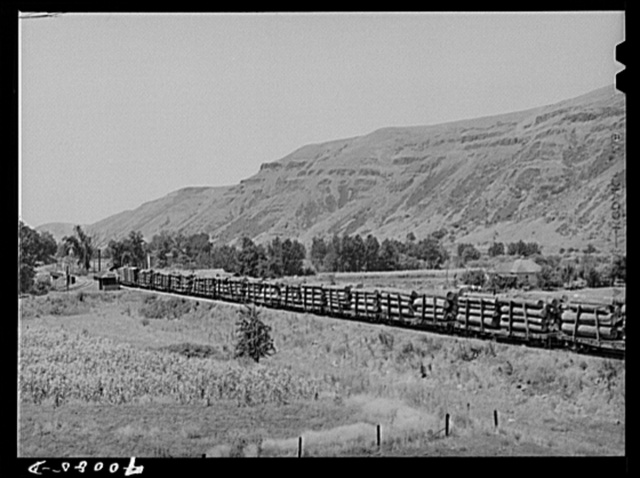 Logging train. Spalding Junction, Idaho