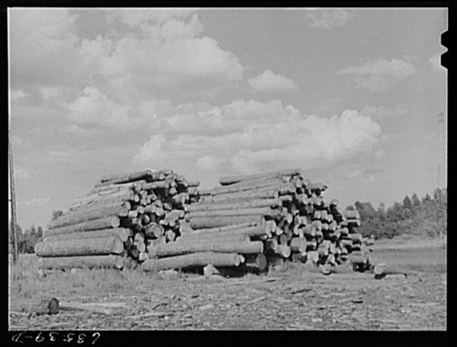 Logs at lumber mill. Trout Creek, Michigan