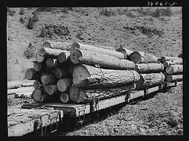 Logs on flatcar which take them into town from mountain logging camp. Baker County, Oregon