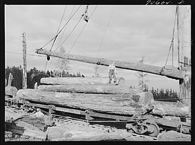 Long Bell Lumber Company, Cowlitz County, Washington. Fir logs loaded on railroad flatcar for removal from woods