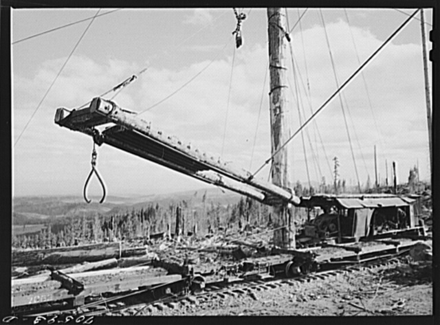 Long Bell Lumber Company, Cowlitz County, Washington. Loading device used at a spar tree for placing logs on railroad cars from the yard