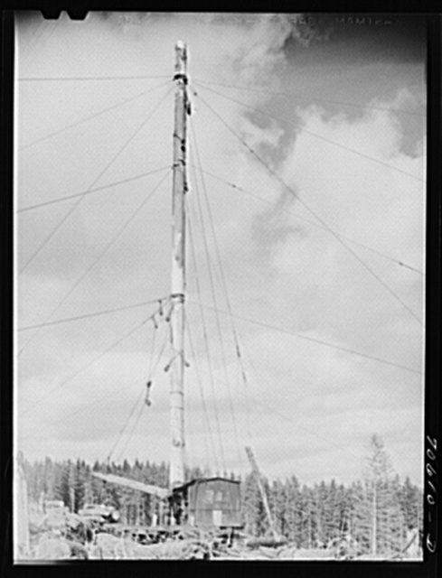 Long Bell Lumber Company, Cowlitz County, Washington. Spar tree used in lumbering operations