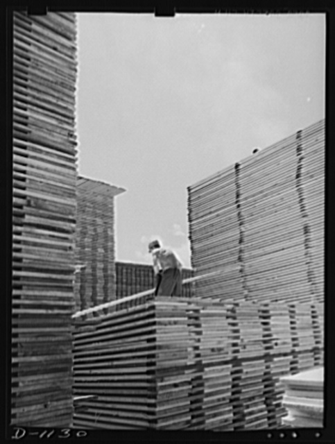 Lumber manufacture. Building stockpiles for war contracts. Ponderosa pine boards being stacked at a western sawmill. Efforts to insure a steady monthly output of ammunition cases. Lumber is also supplied from these mills for the construction of barracks and cantonments