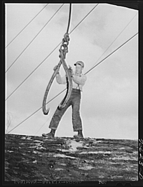 Lumberjack ready to sink the hook into a log. Long Bell Lumber Company, Cowlitz County, Washington