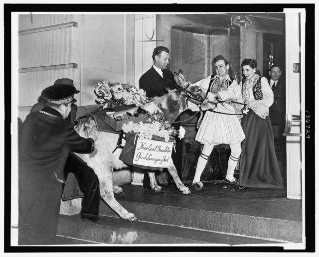 [Man and woman in traditional Greek costumes pulling a burro with flower packs on its back into the Ritz Carlton Hotel, New York City, as part of a fund raising activity for the Greek Emergency Fund] / World Telegram & Sun photo by C. M. Stieglitz.