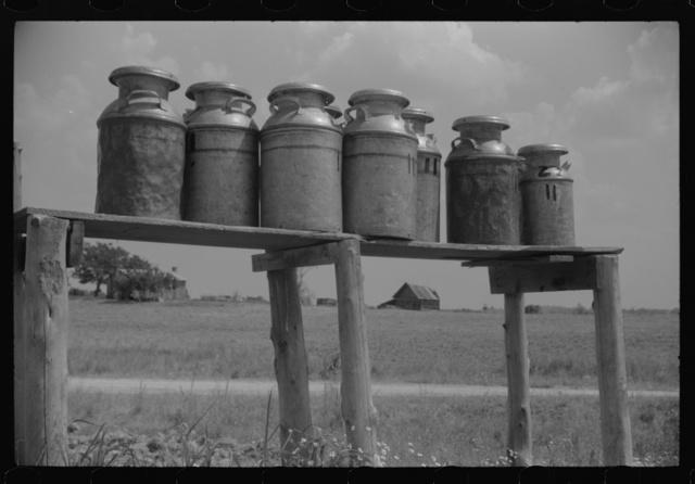 Milk cans along the road near Greensboro, Alabama