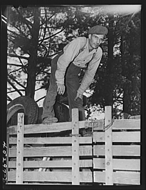Mr. Fred Longamore helping his brother move out of the Pine Camp expansion area to a new farm fifty-six miles away. Mr. Longamore's own farm is also in the area. Near Pine Camp, New York