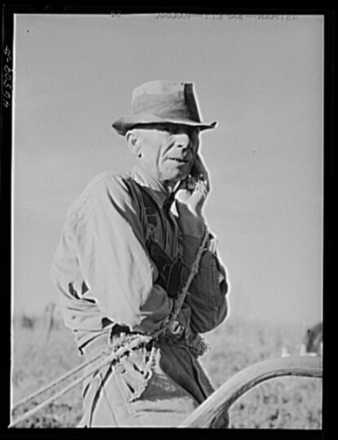 Mr. W.H. Holmes, a renter on the Wray place, plowing sweet potatoes, Greene County, Georgia