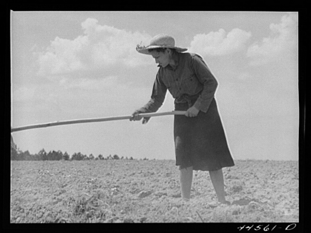 Mrs. Brice McKiver, chopping cotton on their rented farm. Near Woodville, Greene County, Georgia