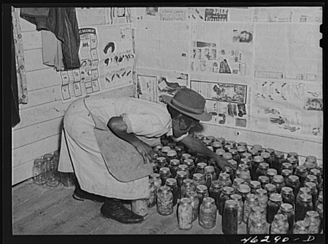Oakland community, Greene County, Georgia (vicinity). Mrs. Gus Wright, FSA (Farm Security Administration) client, with some of her canned goods