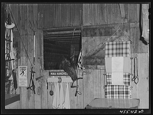 One of the entrants in the sulky races in her stable at the Rutland Fair, Vermont