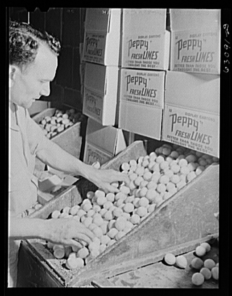 Packing lines at produce market. Chicago, Illinois