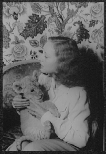 [Portrait of Tallulah Bankhead, with lion cub Winston Churchill]
