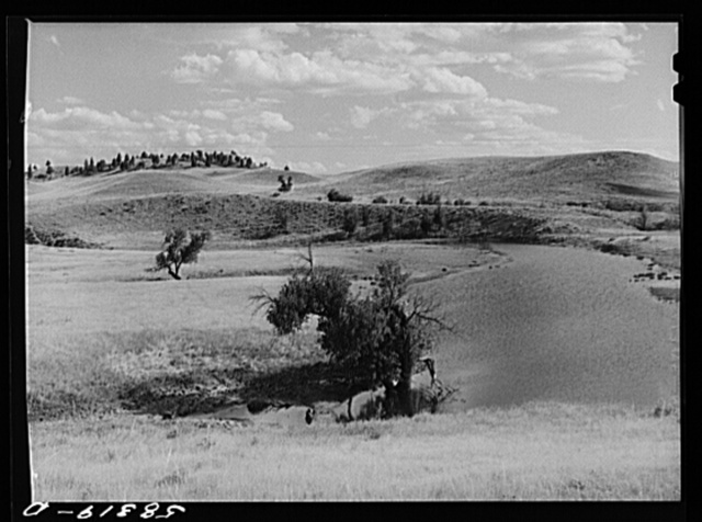 Reservoir for cattle and grazing land on Indian reservation near Crow Agency, Montana