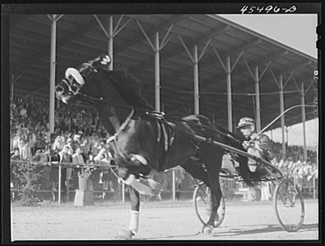 Rutland, Vermont. Sulky races at the Rutland Fair