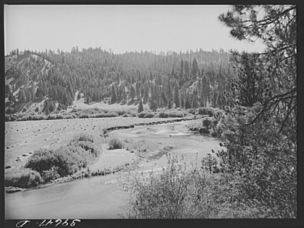 Scene in Garden Valley. Boise County, Idaho. In this mountain valley the farms are small and are devoted to general farming with accent on dairying