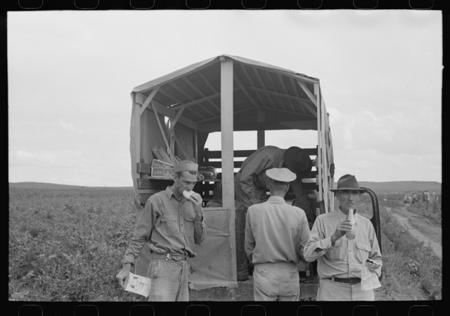 Soft drink wagon in pea field picked by labor contractor's crew. Nampa, Idaho