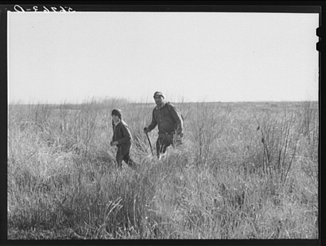 Spanish muskrat trapper and his son returning in the late afternoon after making the rounds of his traps in the marshes near his camp. Delacroix Island, Saint Bernard Parish, Louisiana