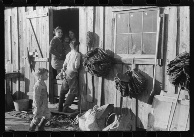 Spanish trapper's camp home and family with dried muskrat skins hanging in front. In the marshes near Delacroix Island, Louisiana. See general caption no. 1