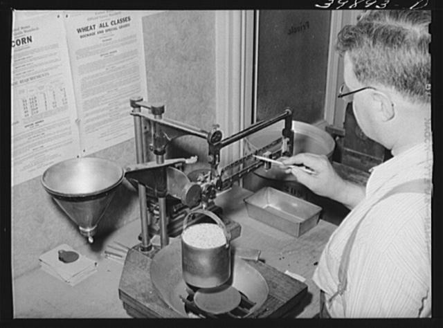 State inspector determines weight per bushel of wheat. Walla Walla, Washington