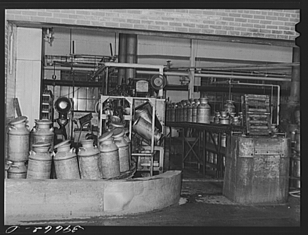 Sterilizing milk cans at the Dairymen's Cooperative Creamery. Caldwell, Canyon County, Idaho