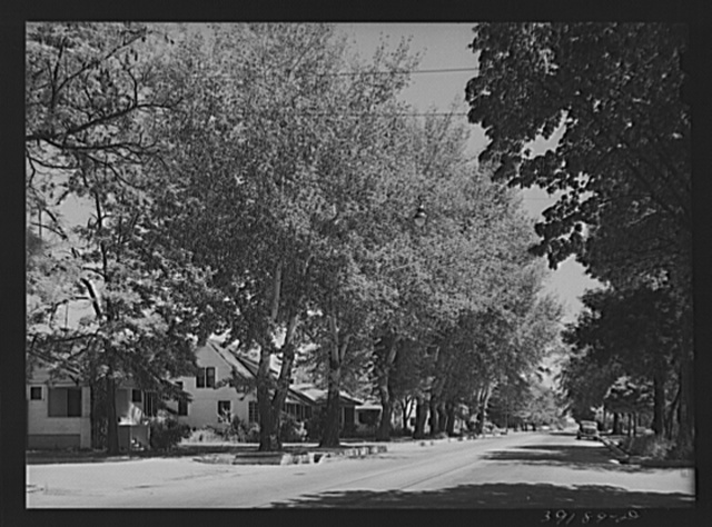 """Street in the residential section of Caldwell, Idaho. In Caldwell is the College of Idaho, the oldest institution of higher learning in the state. Idaho State Guide (Federal Writers' Project) says, """"But none of these give the mental and spiritual flavor of the town (Caldwell), which with its nineteen different churches and its somewhat monastic quietness, is quite unlike any other in the state"""""""