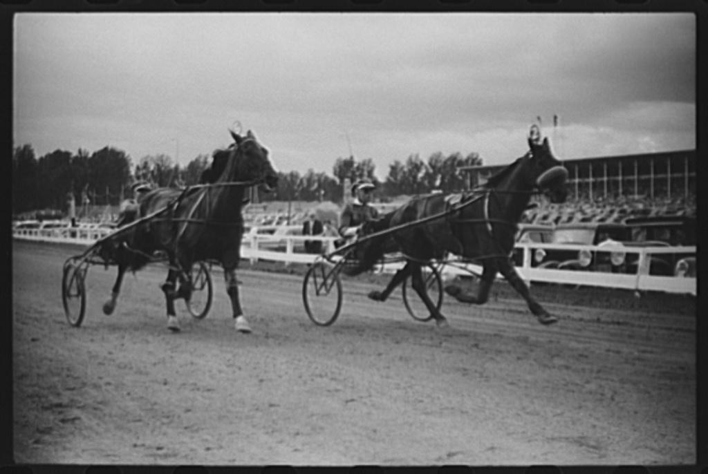 Sulky races at the Rutland Fair, Vermont