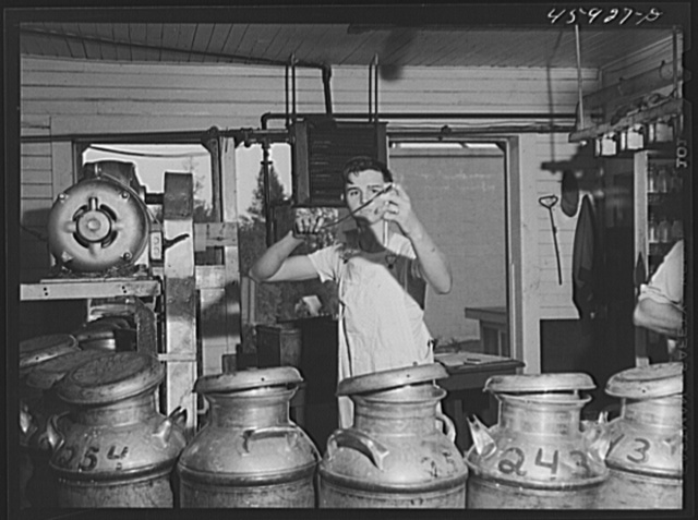 Taking samples of milk for testing at the United Farmers' Co-op Creamery in East Berkshire, Vermont