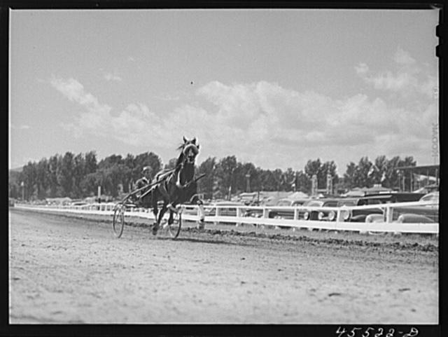 The sulky races at the Rutland Fair, Vermont