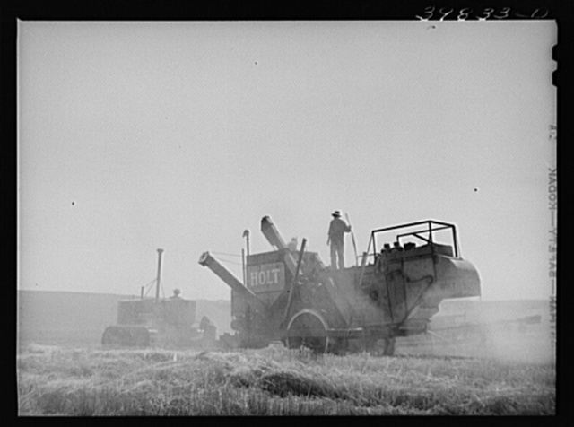 Tractor-drawn combine in wheat field on Eureka Flats. Walla Walla County, Washington