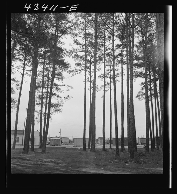 Trailer settlement of workers from Fort Bragg near the woods. Near Fayetteville, North Carolina