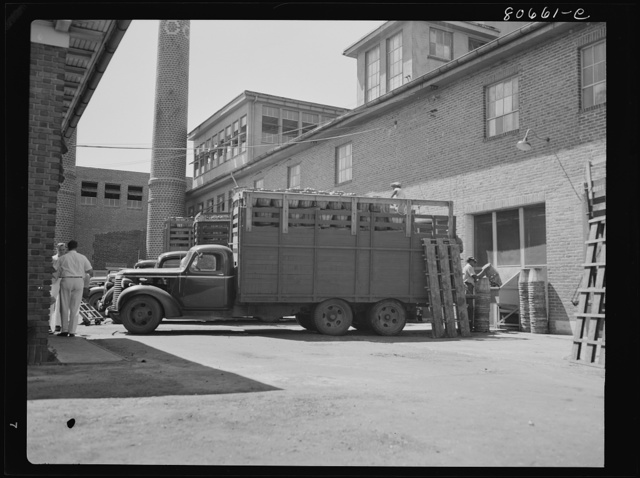 Trucks come directly from field and unload tomatoes directly into the canning room. Phillips Packing Company, Cambridge, Maryland