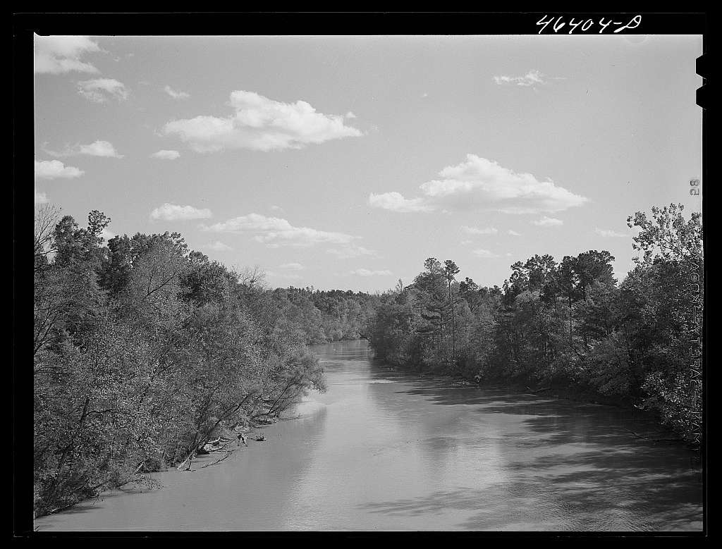 View of the Oconee River, Greene County, Georgia