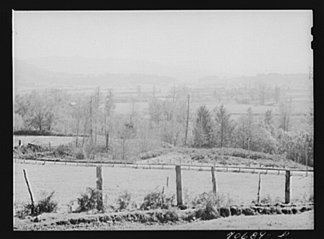 View of Tillamook County, Oregon, a dairying section