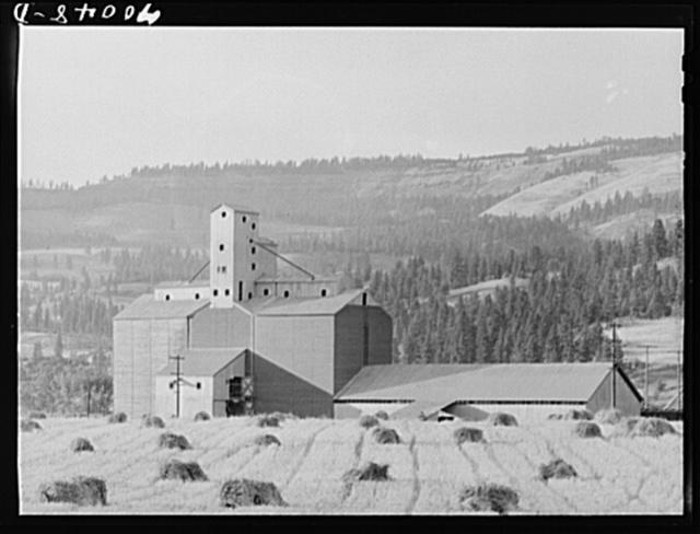 Wheat elevator and sack warehouse. Kamiah, Idaho