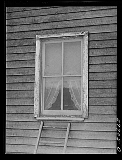Window frame with screen supplied. The top strip has been nailed in place. The screen is then stretched and fastened at the sill. Screening demonstration. Charles County, La Plata, Maryland