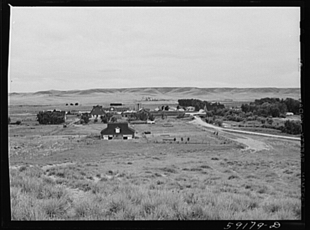 Wyoming Hereford ranch near Cheyenne, Wyoming