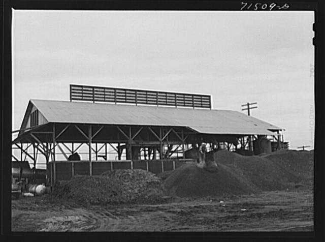 """A byproducts plant in olive oil industry. The mounds are the pomace left after """"soap"""" oil is extracted. This pomace has some value as a fertilizer. Strathmore, California"""