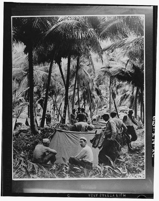 A view of a camp of U.S. troops in the Caribbean area set up in the tropical jungle